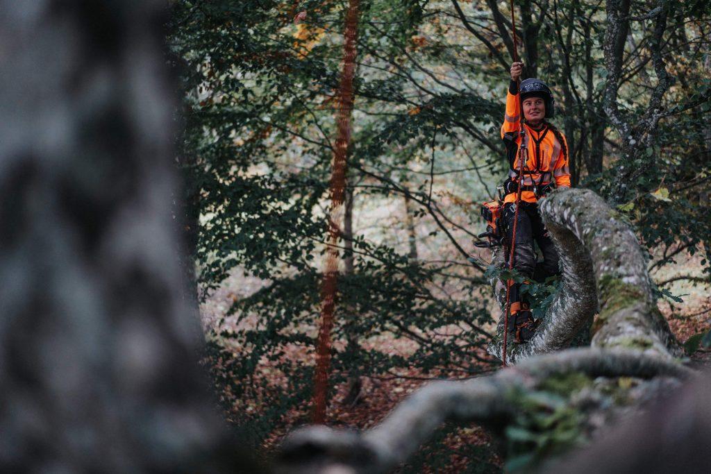 trädvård, beskärning, arborist, beskära träd, Olivia eggen, beskära träd Skaraborg, beskära träd Karlsborg, beskära träd Skövde, beskärning skaraborg,